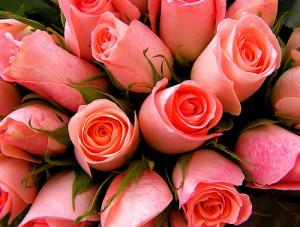 Для женщины-руководителя первый и обязательный подарок – цветы