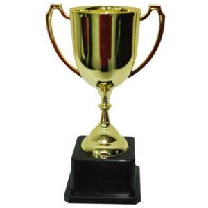 Кубок для начальницы
